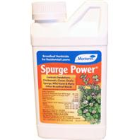 Monterey -Spurge Power-8 Oz