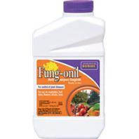 Bonide Products  - Fung-Onil Multi-Purpose Fungicide Concentrate--1 Quart