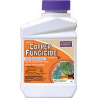 Bonide Products  - Liquid Copper Fungicide Concentrate--1 Pint