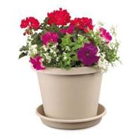 Myers Industries - Classic Pot-Sandstone-6 Inch