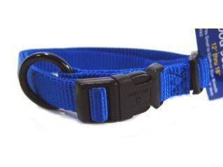 Hamilton Pet - Adjustable Nylon Dog Collar - Blue - 0.63 Inch x 12-18 Inch