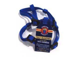 Hamilton Pet - Adjustable Comfort Nylon Harness - Blue - 3/8 x 10-16 Inch