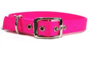 Hamilton Pet - Deluxe Double Thick Nylon Dog Collar - Hot Pink - 1 Inch x 24 Inch