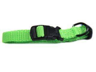 Hamilton Pet - Adjustable Dog Collar - Lime - 3/8 x 7-12 Inch