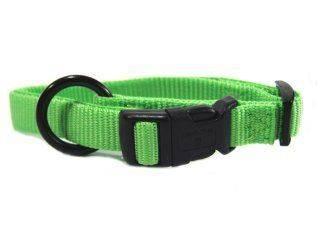 Hamilton Pet - Adjustable Dog Collar - Lime - 5/8 x 12-18 Inch