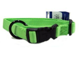 Hamilton Pet - Adjustable Dog Collar - Lime - 3/4 x 16-22 Inch