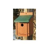 Audubon/Woodlink - Going Green Wren House - Green - 5.75 X 5.5 X 8 Inch