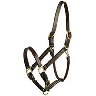 Gatsby Leather - Classic Adjustable Halter Horse - Large