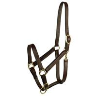 Gatsby Leather - Stable Halter - Suckling