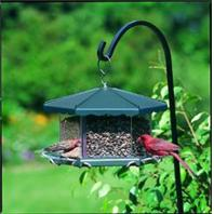 Homestead/Gardner - Party Bird Feeder - Gray
