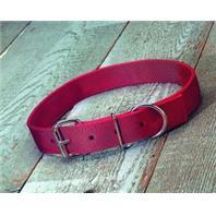 Hamilton Halter - Heifer Nylon Collar - Red - 1 3/4 x 40 Inch