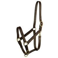 Gatsby Leather - Stable Halter - Yearling
