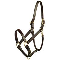Gatsby Leather - Classic Adjustable Halter Horse