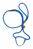 Mendota Pet - Dog Walker - Blue - 3/8 Inch x 6 Feet
