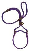 Mendota Pet - Big Dog Walker - Purple - 1/2 Inch x 4 Feet