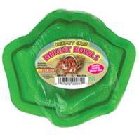Zoo Med - Hermit Crab Bright Bowls Water And Food Dish - Green