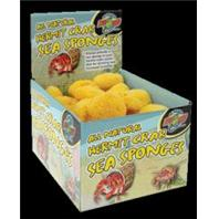 Zoo Med - All Natural Hermit Crab Sea Sponges Display - Natural -  36 PIECE