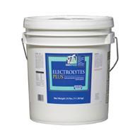 Milk Products - Sav-A-Caf Electrolyte Plus - 25 Lb