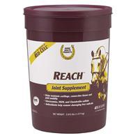 Farnam - Horse Health - Reach Joint Supplement - 2.8 Lb