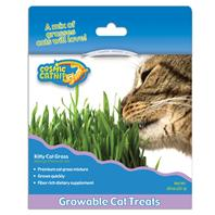 Our Pets - Cosmic Kitty Cat Grass