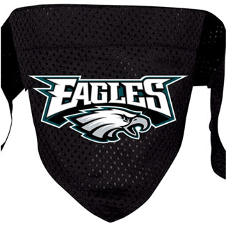 DoggieNation-NFL - Philadelphia Eagles Dog Bandana - Small