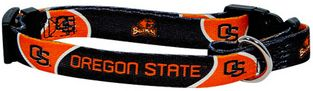 DoggieNation-College - Oregon State Dog Collar - Medium