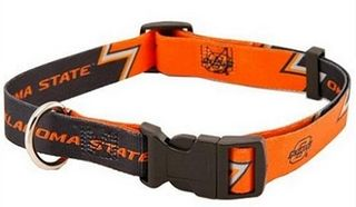 DoggieNation-College  - Oklahoma State Dog Collar - Large