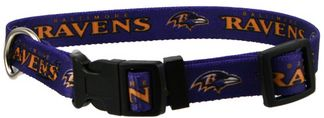 DoggieNation-NFL - Baltimore Ravens Dog Collar - Medium