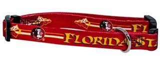 DoggieNation-College - Florida State Dog Collar - Large