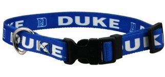 DoggieNation-College - Duke Dog Collar - Small