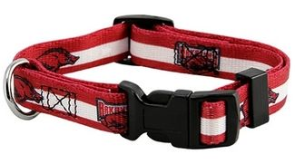 DoggieNation-College - Arkansas Razorbacks Dog Collar - Large