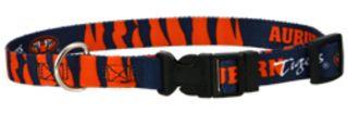 DoggieNation-College - Auburn Dog Collar - Large