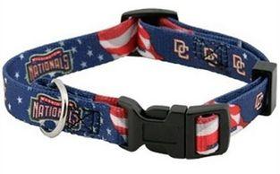 DoggieNation-MLB - Washington Nationals Dog Collar - Small