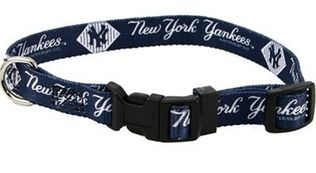 DoggieNation-MLB - New York Yankees Dog Collar - Medium