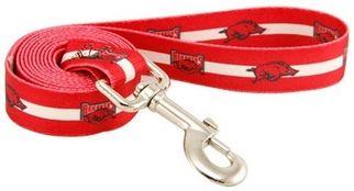 DoggieNation-College - Arkansas Razorbacks Dog Leash - One-Size