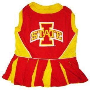 DoggieNation-College - Iowa State Cheerleader Dog Dress - XtraSmall