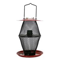 Sweet Corn Products - Sunflower Lantern Feeder With Tray - Red & Black - 1.7 Lb Capacity