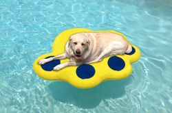 Fido Pet Products - Inflatable Raft - Blue/Yellow - Large - 12 Feet