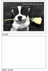 DogTales4You - Pablo Rose Card #17 - 5x7 Inch