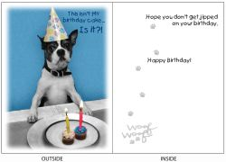 DogTales4You - Pablo Bday Hat2 Card-BIRTHDAY-#4 - 5x7 Inch