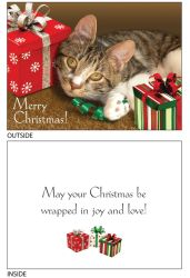 DogTales4You - Star Presents Card #70 - 5x7 Inch