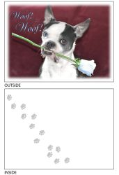 DogTales4You - Chance Rose Card-BLANK-#20 - 5x7 Inch
