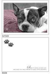 DogTales4You - Pablo Sympathy Card #9 - 5x7 Inch