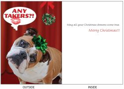DogTales4You - Mugsy Mistletoe Card #64- 5x7 Inch