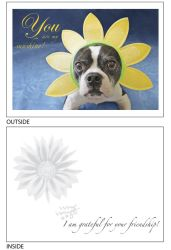 DogTales4You - Pablo Flowerhead Card-FRIENDSHIP=#21 - 5x7 Inch