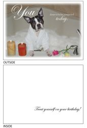 DogTales4You - Max Tub Card-BIRTHDAY-#14- 5x7 Inch