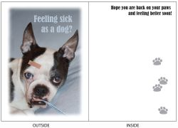DogTales4You - Chance Bandaid Card #15 - 5x7 Inch