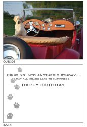 DogTales4You - Bigsbi Car Card #61- 5x7 Inch