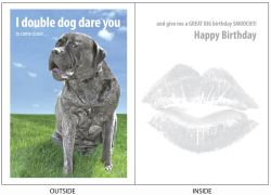 DogTales4You - Lola Too Close Card #26 - 5x7 Inch