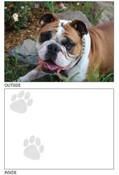 DogTales4You - Mugsy Relaxing Card #60 - 5x7 Inch